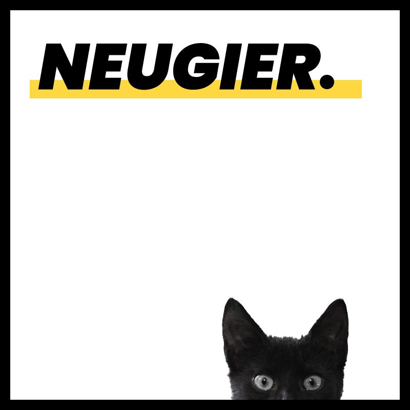 """Die quadratische Grafik zeigt den slideguru-Wert """"Neugier"""" im oberen Bereich. An der unteren Kante ist eine schwarze Katze mit großen Augen zu sehen."""